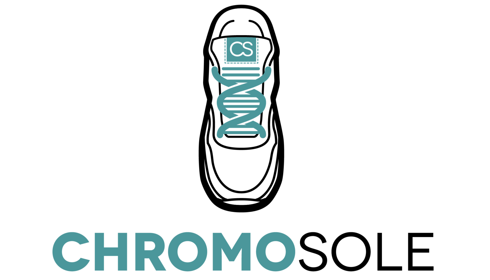 Sneaker Accessories by Chromosole - Sneaker Keychains